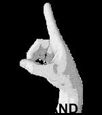 D Hand