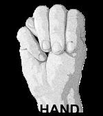M Hand